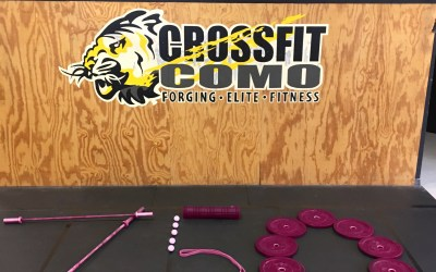Burpees for Breast Cancer 2016