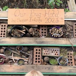 Our Bug Hotel is Ready for Guests!