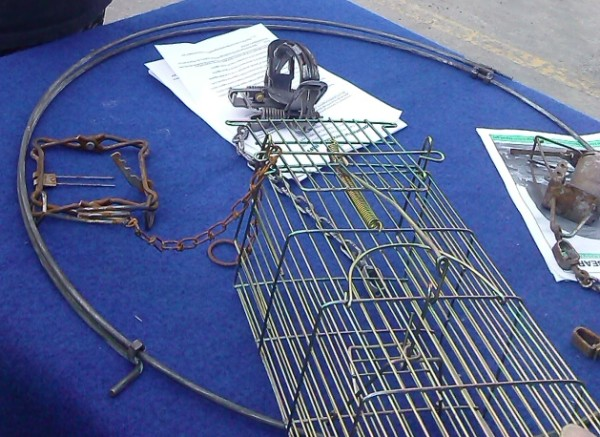Various types of traps