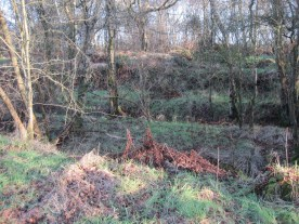 Raised banks within the cutting