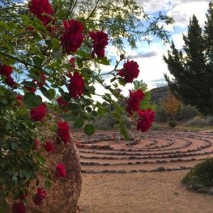Red roses in front of a 7-path labyrinth with cone shaped knoll behind near Sedona. This is a one of the sites where we do ceremony during our Mystical Nature Shamanic Journey and Ceremony program.