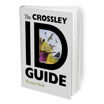 The Crossley ID Guide: Western Birds