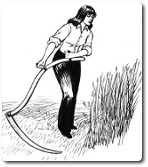 Synopsis of The Mower against Gardens » Metaphysical poets