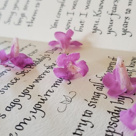 light purple flowers are scattered across black calligraphy on white paper.