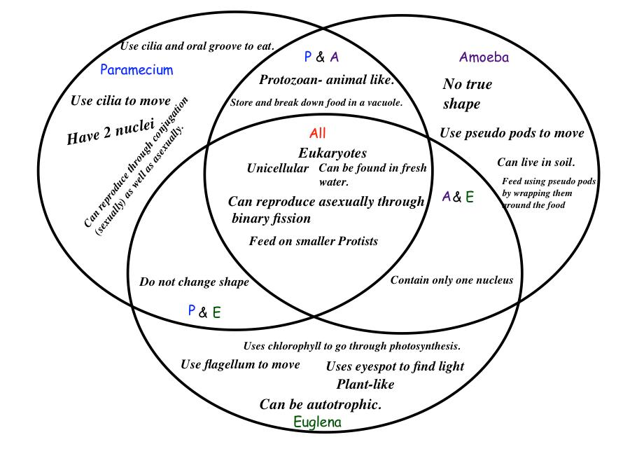 crossroadscomets / Science