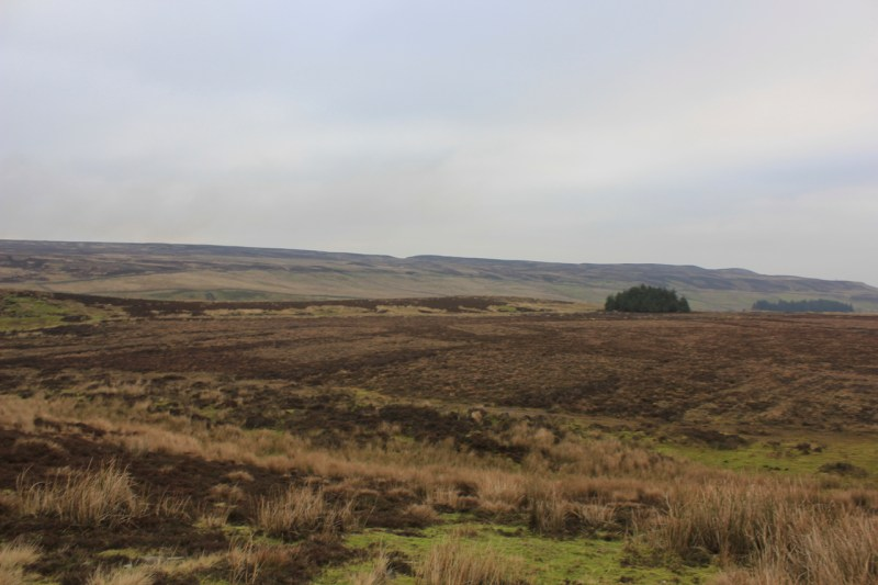 The walk in to bothy two in Wensleydale, Yorkshire Dales