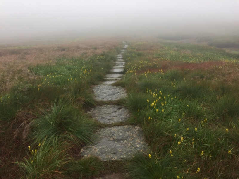The path to Great Shunner Fell