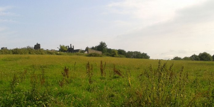 Photo of agricultural land at Walsh Manor farm which will be used to build houses
