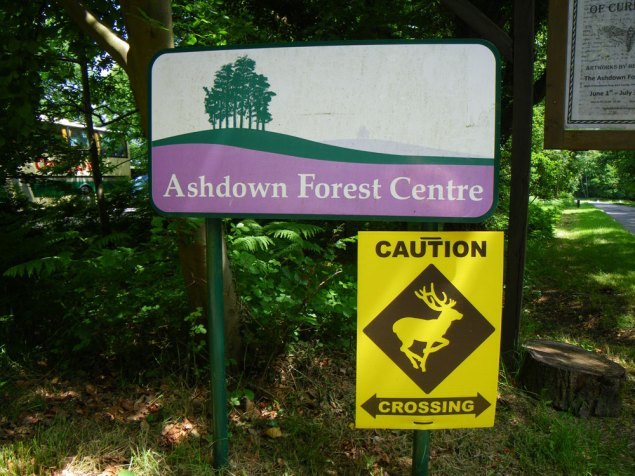 Ashdown-Forest-and-Deer-Sig