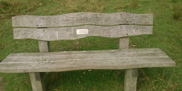 Brian-Wembridge-bench