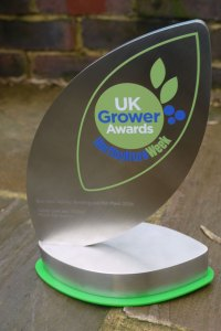 UK Grower Awards 2016 Trophy for Best New Variety: Bedding and Pot Plant