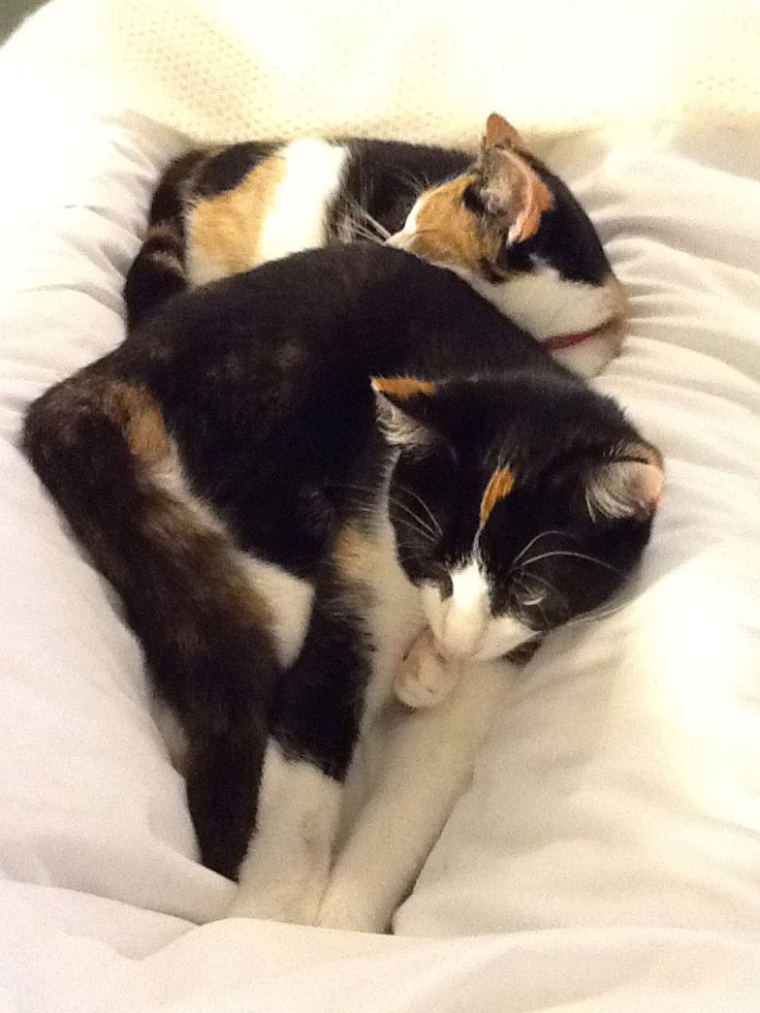 Immie in the front photographed with her sister
