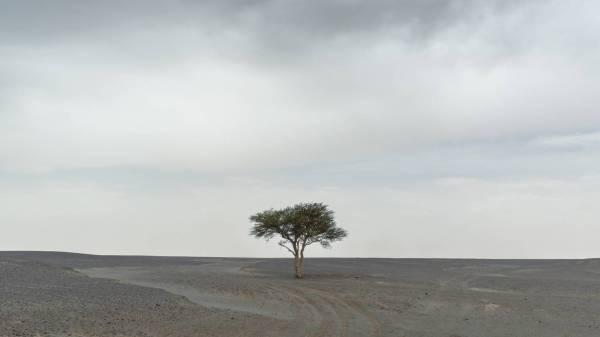 Fullness in Emptiness - Valerio Bellone