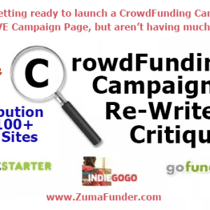 Crowd Funding Campaign ReWrite + News Promotion to 100+ News Sites