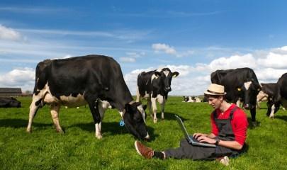 Innovation agro-alimentaire et technologie.