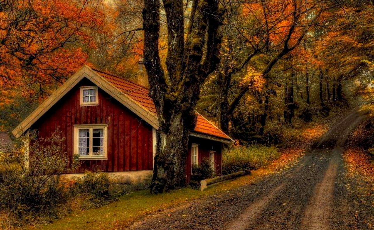 Fall Cottage Wallpaper 7 Day Weekly Media Minute Bonus Crowdsurf Work