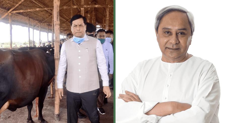 Assam vs Odisha, Which State has handled Corona better?