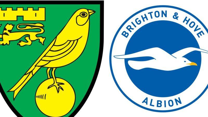 Norwich City vs Brighton & Hove Albion Predictions and Odds