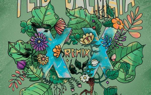 Feid & Dalmata – XX (Remix) lyrics