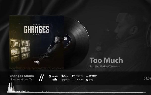 Rj The Dj - Too Much lyrics