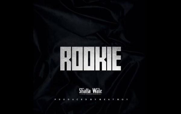 Shatta wale - Rookie lyrics