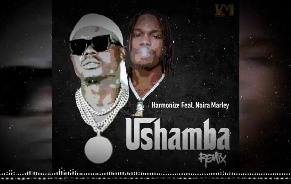 HARMONIZE Ft NAIRA MARLEY - Ushamba Remix Lyrics