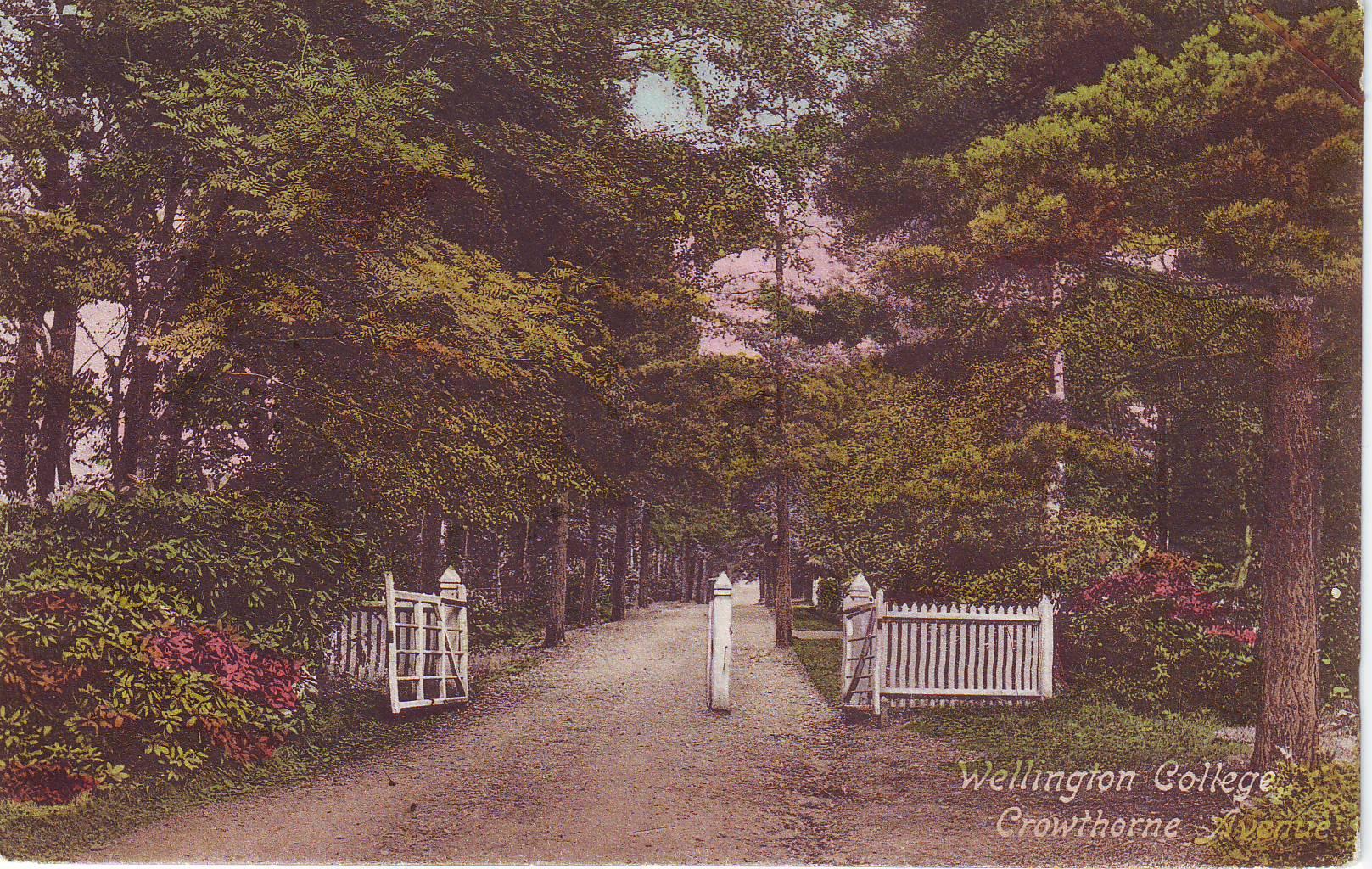 Wellington College, Crowthorne Avenue