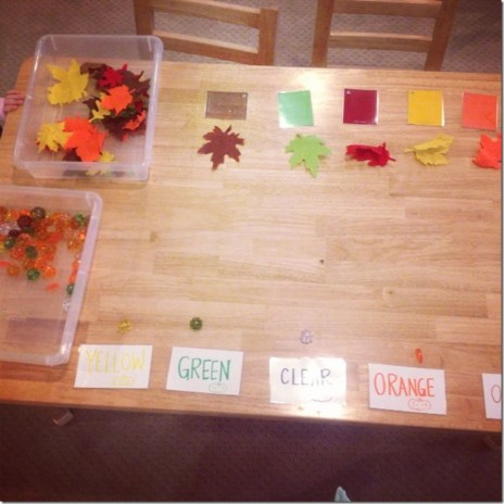 Sorting felt leaves by color