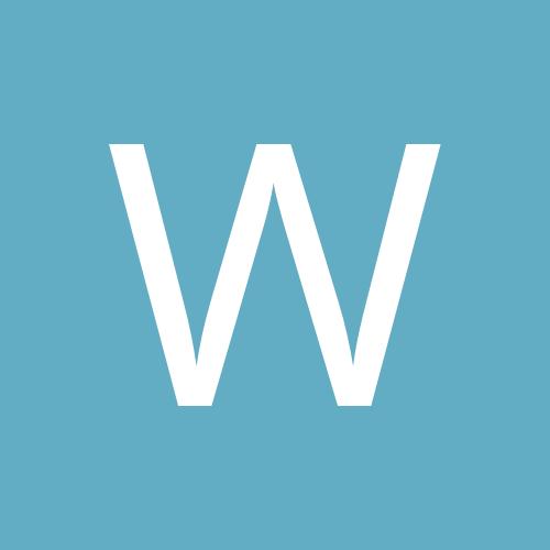 wesley brito
