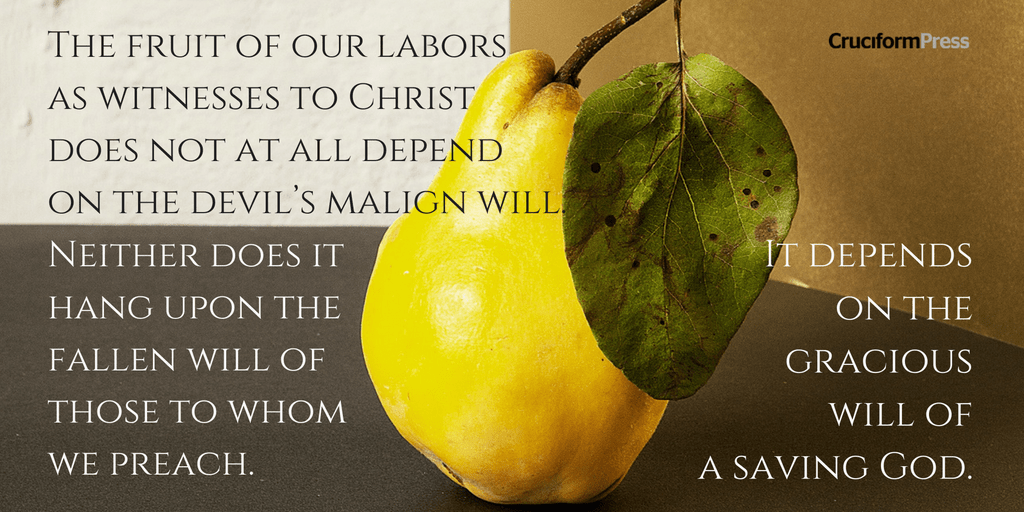 The Fruit of God's Call