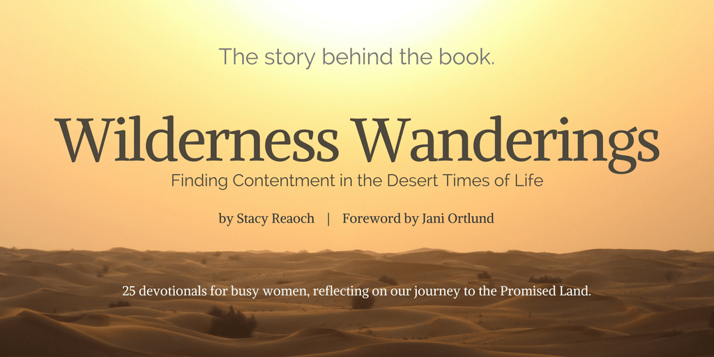 Wilderness Wanderings: The Story Behind the Book