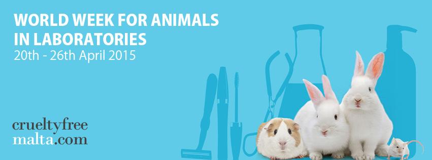world week animals in laboratories