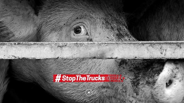 #stopthetrucks