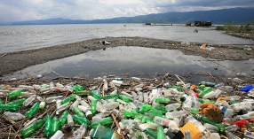 around 22-billion plastic bottles are thrown away annually, and many of them end up in the ocean
