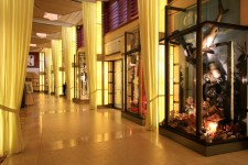 celebrity-solstice-shopping