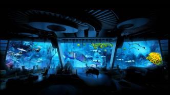 the explorer-class ships in ponant's fleet feature an underwater lounge