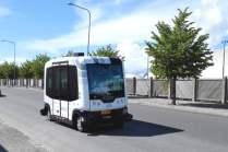 royal-caribbean-driverless-vans2