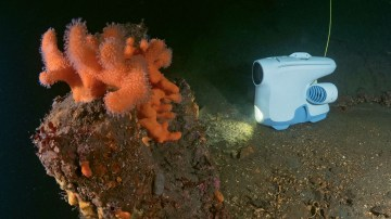 the blueye pioneer is an underwater drone developed in norway that is being used by hurtigruten to let passengers see video of sea life and conditions on their smart phones or tablets