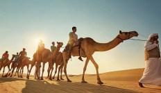 camel riding in dubai desert