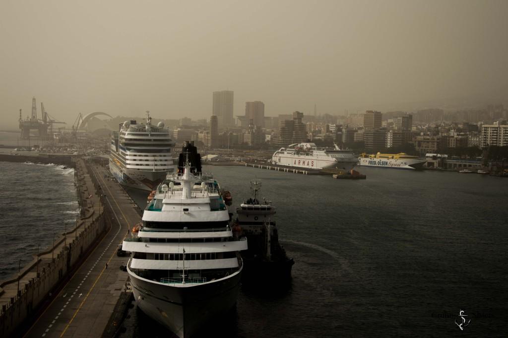 Der Hafen von Teneriffa mit der MS Amadea und AIDA