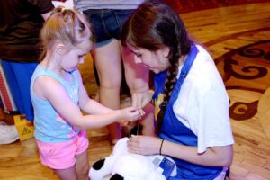 Carnival Cruise Line Teams Up To Create Build-A-Bear Workshop At Sea