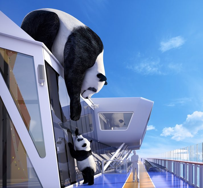 Afbeeldingsresultaat voor Ovation of the seas Ice Bear