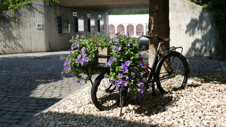 Vilshofen flower display