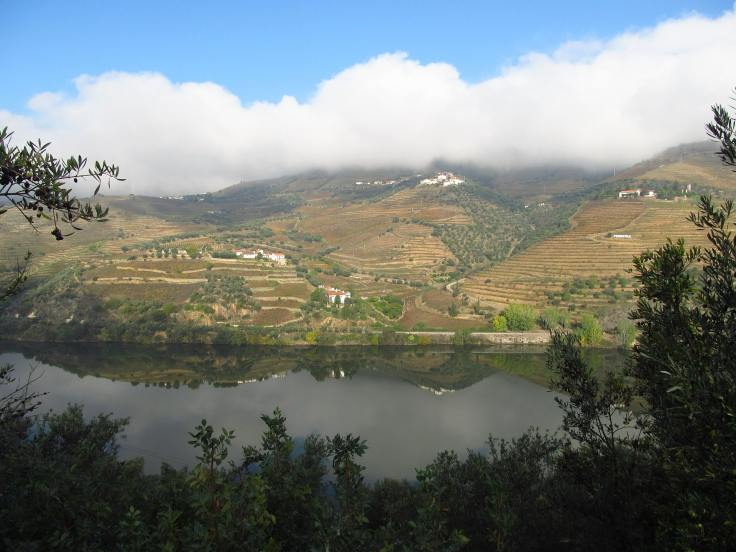 Douro valley is the first river cruise for uk