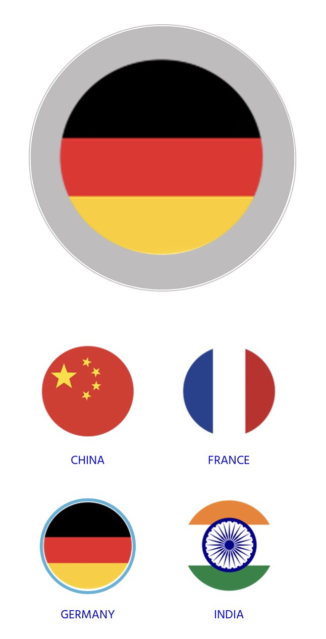 Flags OceanMedallion designs