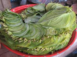 Betle leaves at the market