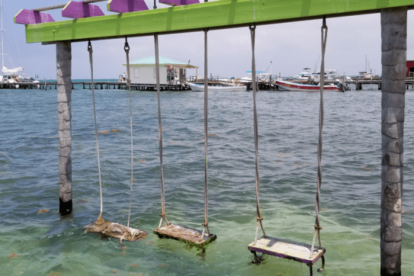 Caye Caulker swings