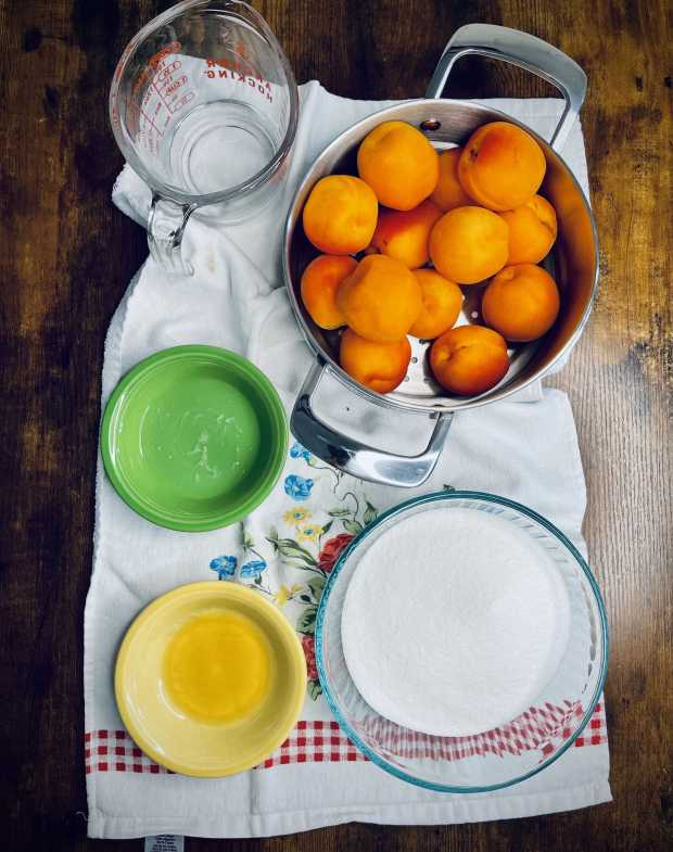 small-batch apricot jam ingredients