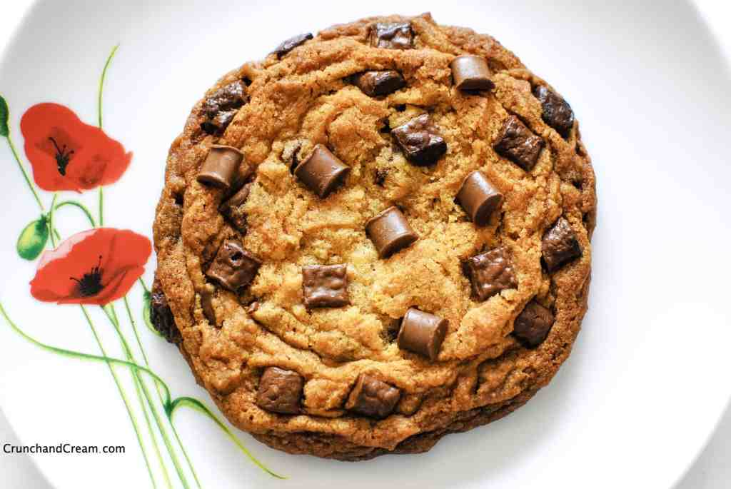overhead of a large single-serving chocolate chip cookie