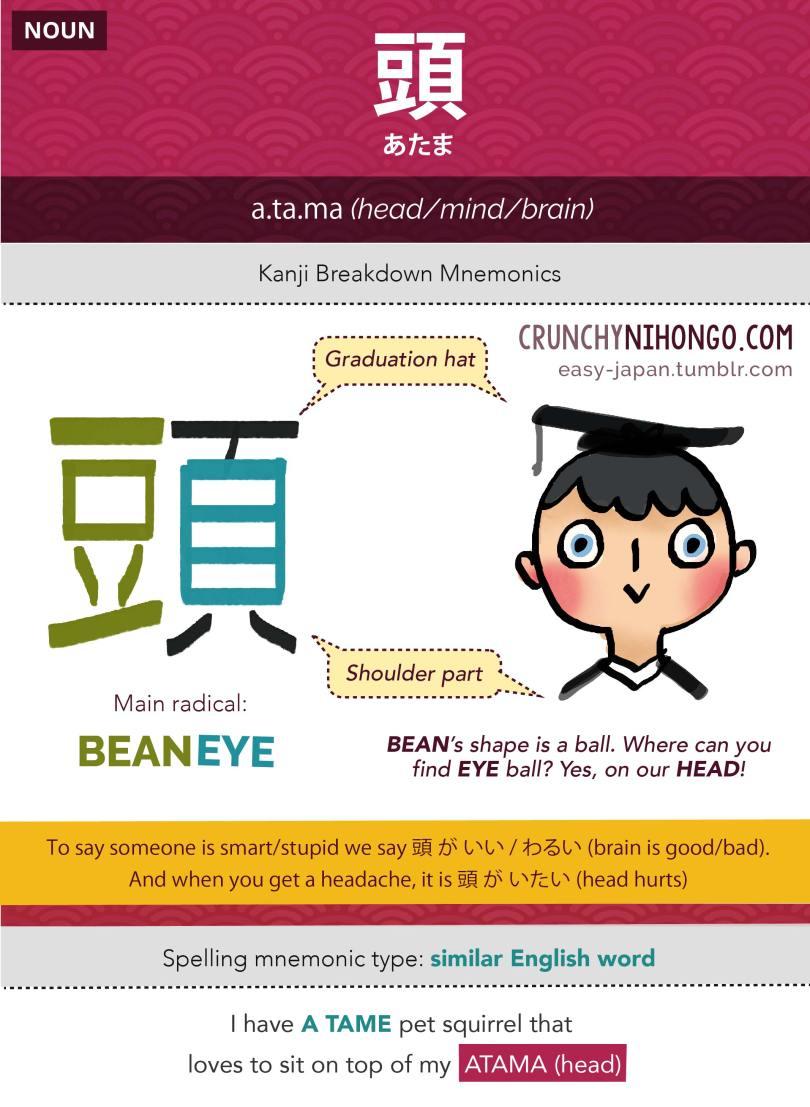 JLPT N5 Kanji & Vocabulary Card: 頭 • あたま • Atama • Head